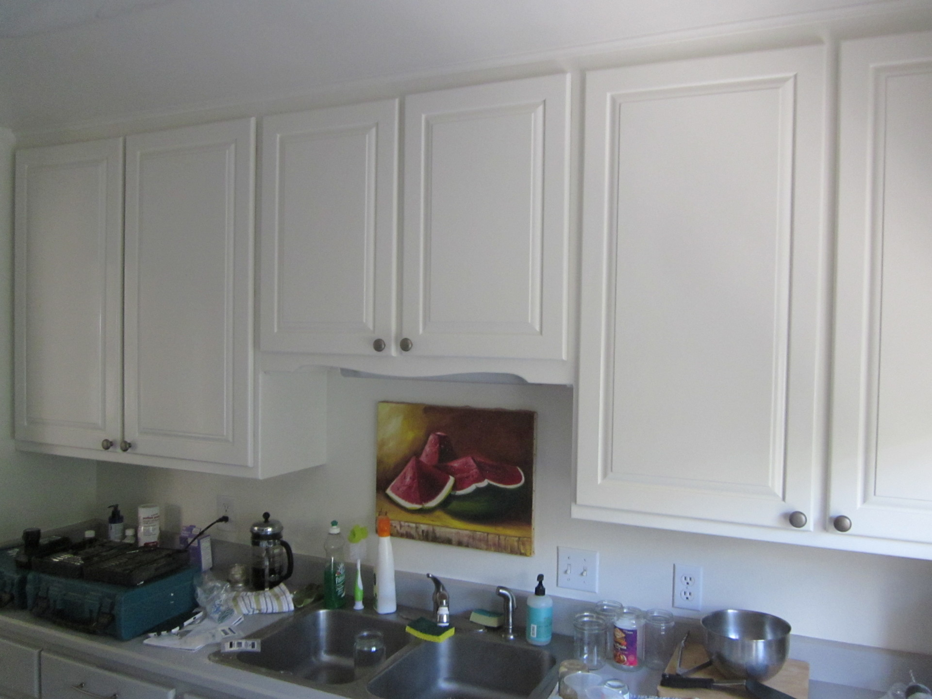 Freshly Painted Cabinets